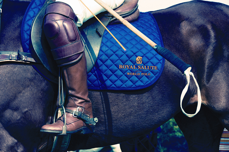 RS_World Polo_small